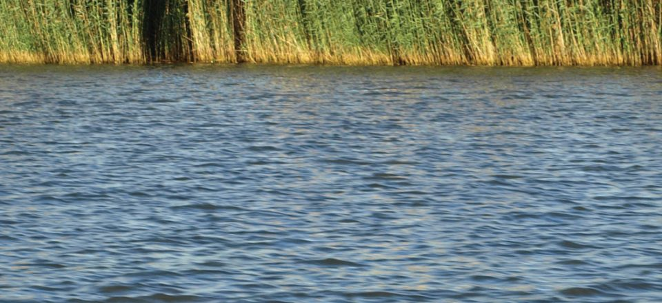 Water-Land